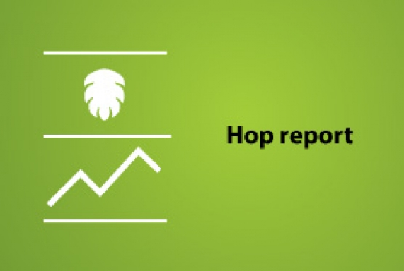 Hop report: July