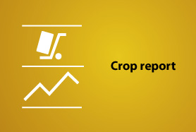crop report slide